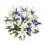 Send a treat to any flower lover by gifting this 1...