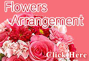 RightFlorist:Member